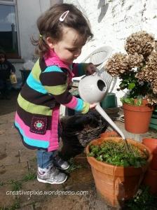 Elsie garden web