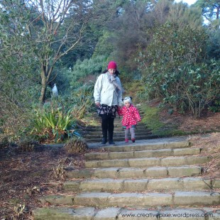 creative pixie Winter walk