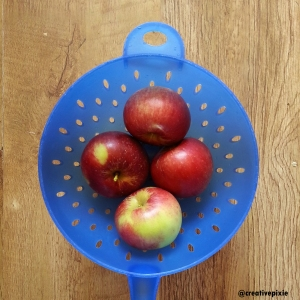 creative pixie 1st apple harvest 2014