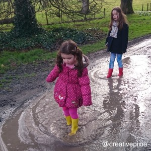 Castle Ward puddle